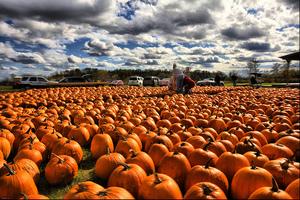 Monday October 1 2012